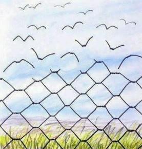 L'enseignement de Laborit en prison : un appel à tous et une anecdote !