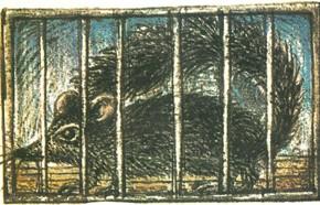 Dossier Psychologie n° 145 – Mars 1982 : quatre expériences sur les rats