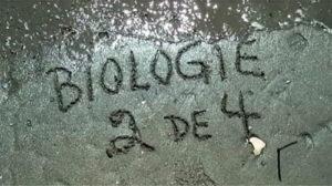 2-biologie